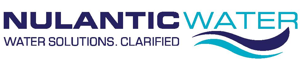 Nulantic Logo